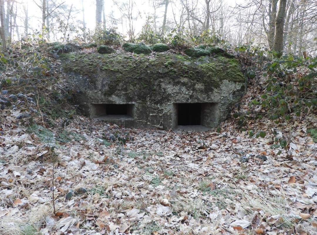 Definitieve bescherming van de bunkers en loopgraven van de Nordabschnitt bij het Mastenbos